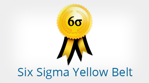 Six sigma yellow belt elearning